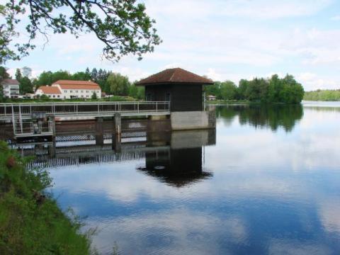 rybník Hejtman v Chlumu u Třeboně